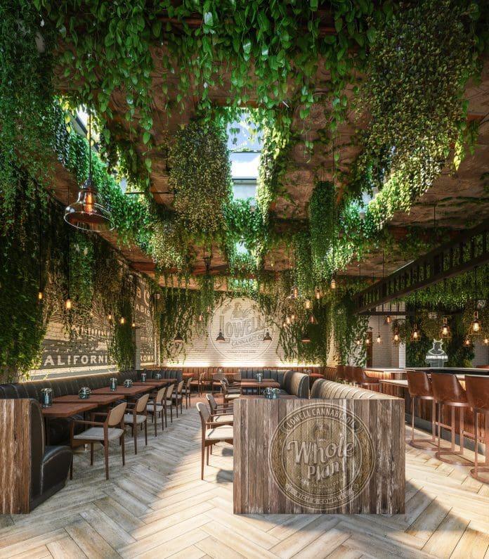 🔥全美首家大麻🍃咖啡店☕️Lowell Cafe 将于9月底在洛杉矶开业