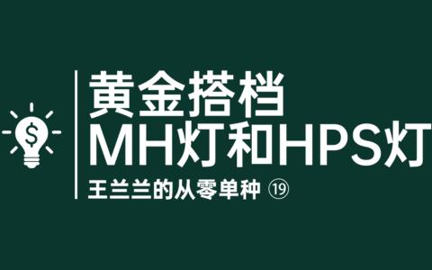 黄金搭档MH灯和HPS灯——从零单种(18)