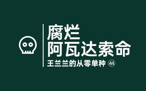 腐烂,阿瓦达索命咒——从零单种(43)