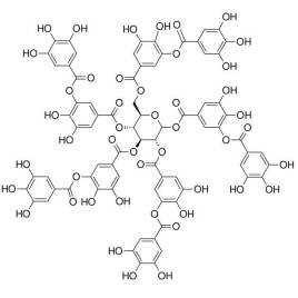 学术大麻(一)类黄酮