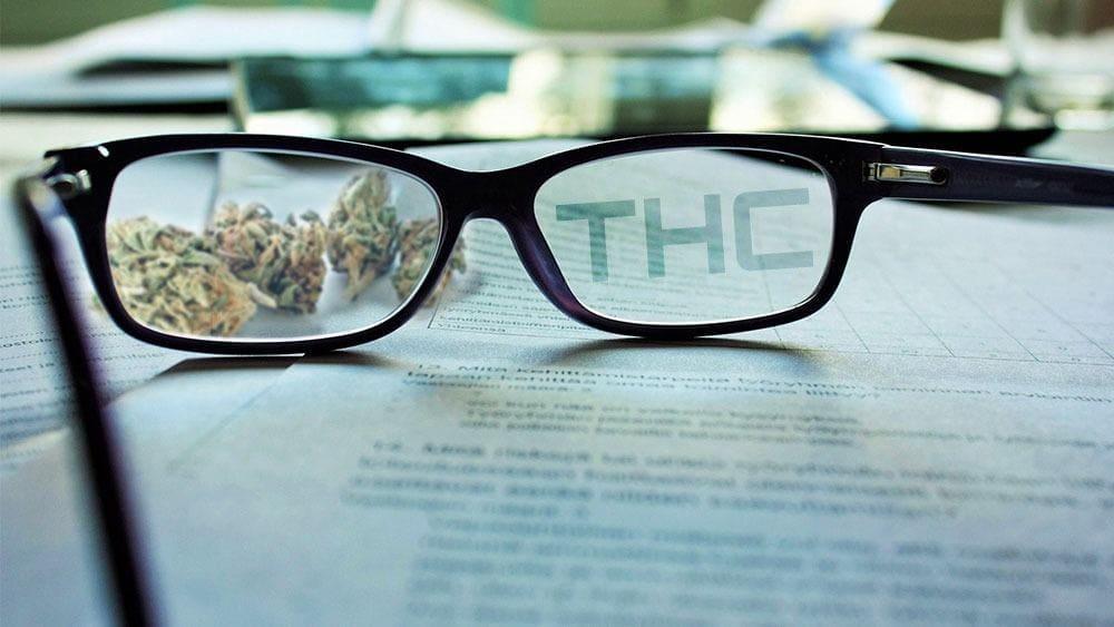 什么是THC?四氢大麻酚的科学指南