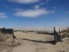 洛杉矶县羚羊谷查获并销毁非法种植大麻3800株