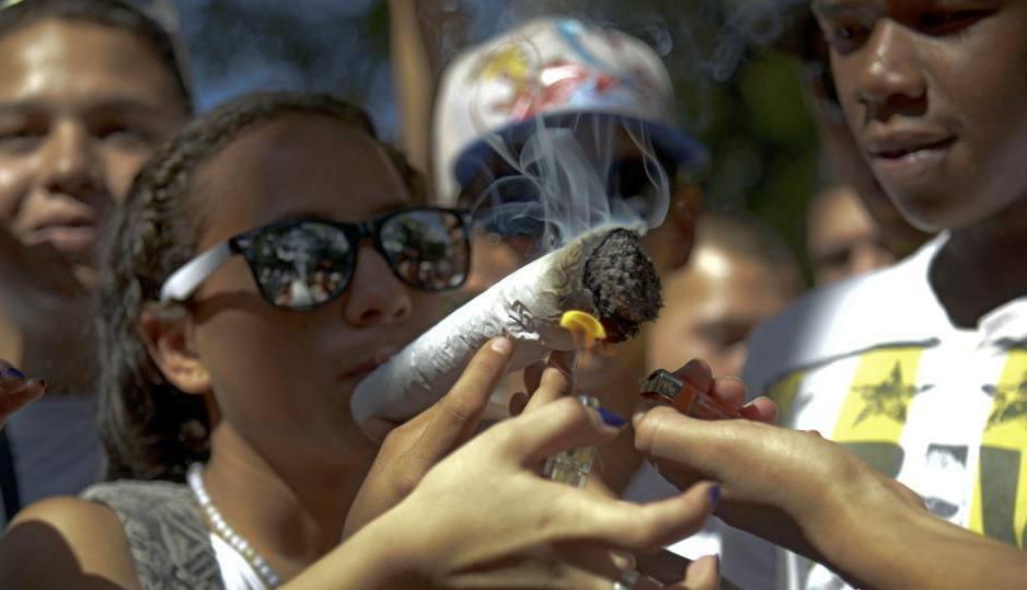 大麻的历史——王兰兰的从零单种(1)