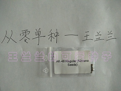 ak481-4
